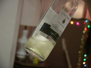Wine slushie 12-8-03 By quinn.anya