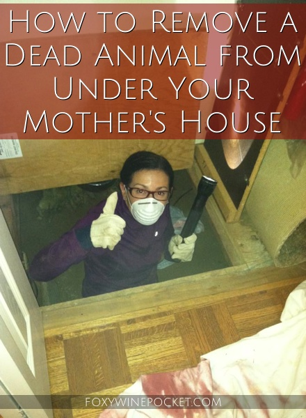 How to Remove a Dead Animal from Under Your Mother's House #dirtyjob #someonesgottadoit