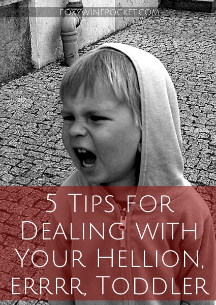 Here are a few tips from my time in the toddler trenches. I hope they will serve you as well as they did me. @foxywinepocket | humor | toddlers