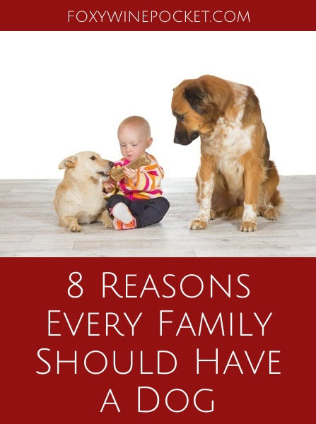 I highly recommend having a dog as a sanity saver. Seriously, if you have kids and don't already have a dog, go get one. Now. Right now. | @foxywinepocket | humor | babies | dogs