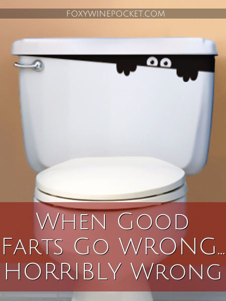 When Good Farts Go Wrong ... HORRIBLY Wrong @foxywinepocket #TMI #hopeyouhaveastrongstomach